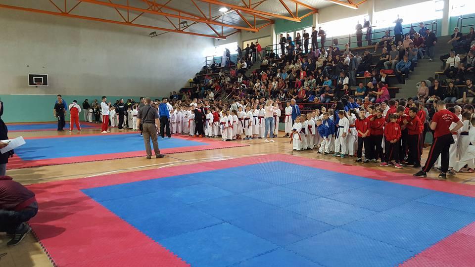 Karate klub Tešanj uspješan na turniru u Usori.