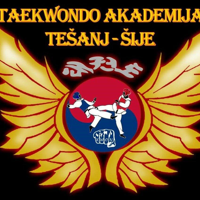 Taekwondo akademija Tešanj – Polaganje za pojaseve.